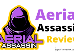 Aerial Assassin Review